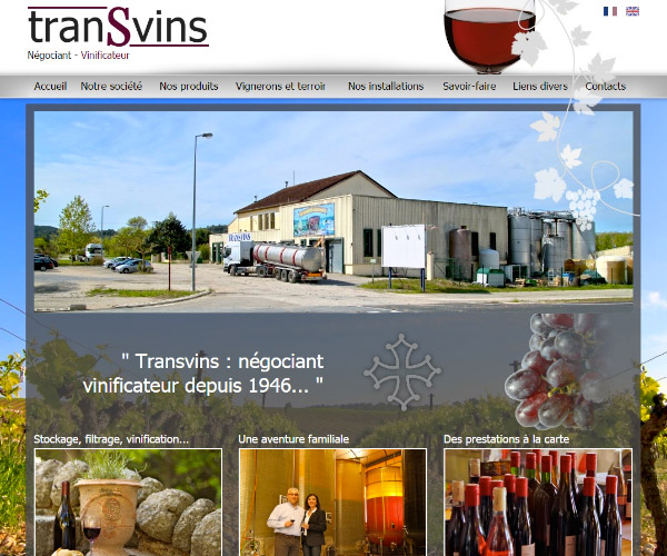 Transvins