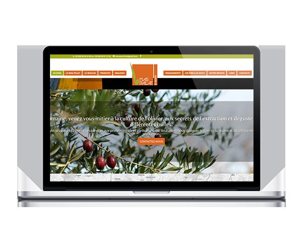 Boutique en ligne du Mas Palat : produits oléicoles