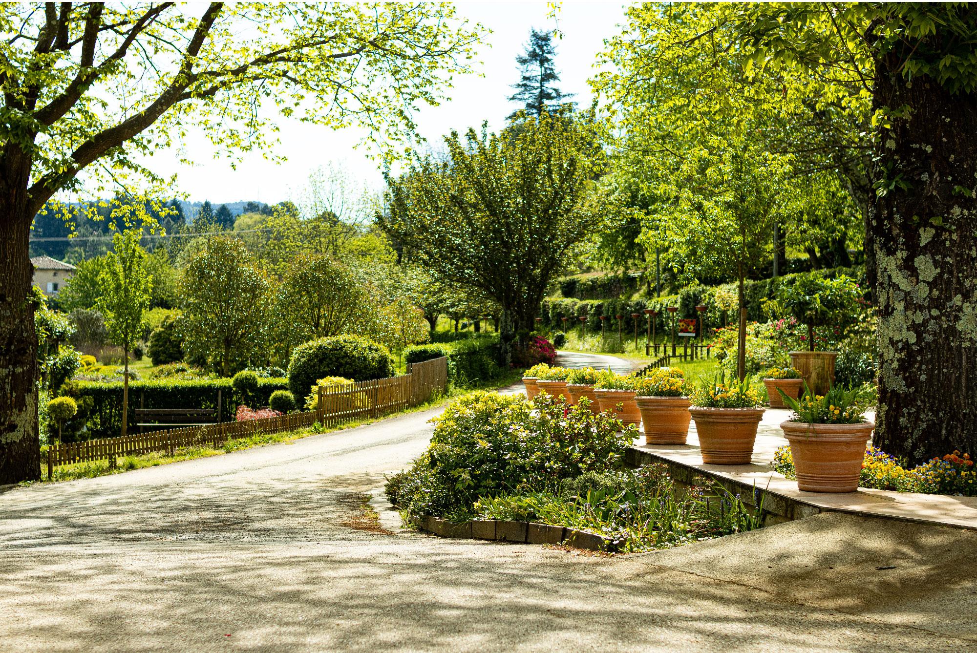 Verdier horticulteur à Saint Jean du Gard